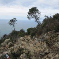 Weg zwischen Monterosso und Levanto