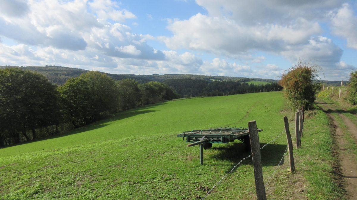 Tag 5 – zu Fuß durch die Ardennen : von Nessonvaux nach Angleur/Lüttich (20 km)