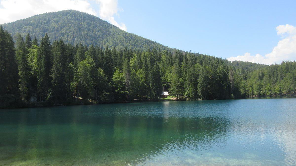 Tag 6  – Auf der Via alpina durch Slowenien, Italien und Österreich: Von Planinski dom Tamar durchs Tal zum Rifugio Zacchi
